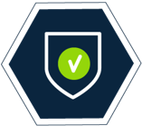 New Year Resolution Icon - Security